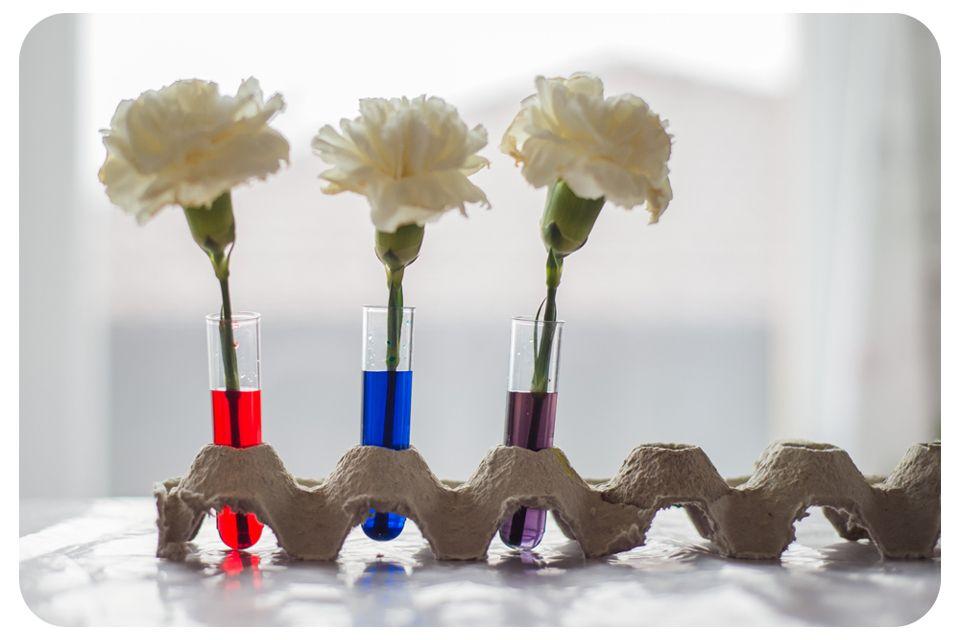 kvety1